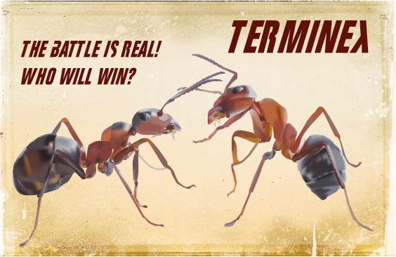 Ad for Terminex using Adobe Illustrator